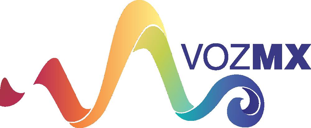 Voz MX Ingeniería